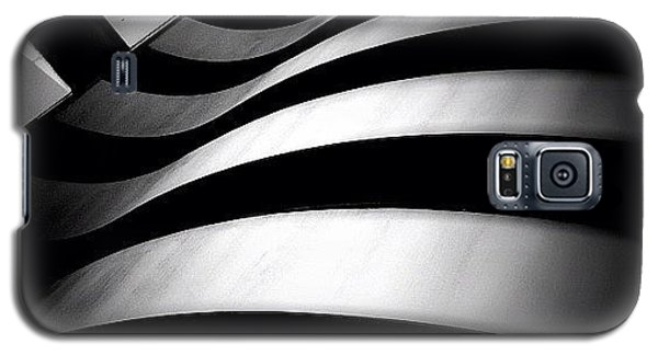 Zebra City - Concrete Jungle Galaxy S5 Case