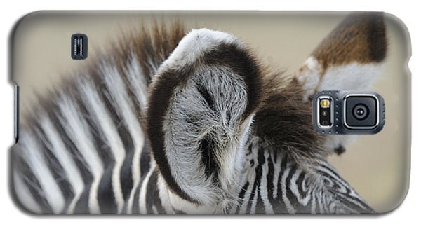 Zebra Ears Galaxy S5 Case