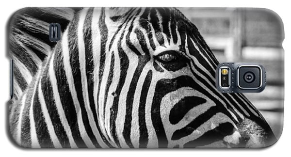 Galaxy S5 Case featuring the photograph Zebra by Geraldine Alexander