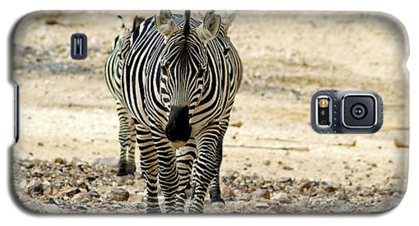 Galaxy S5 Case featuring the photograph Zebra Lineup by Arik Baltinester