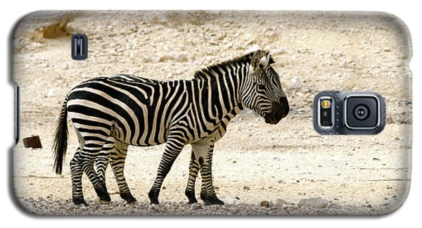 Galaxy S5 Case featuring the photograph Zebra Mix  02 by Arik Baltinester