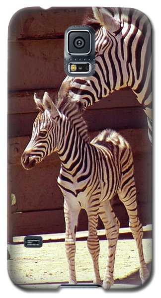Zebra Mom And Baby Galaxy S5 Case
