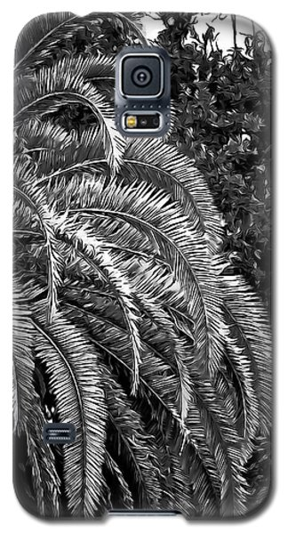 Galaxy S5 Case featuring the photograph Zebra Palm by DigiArt Diaries by Vicky B Fuller