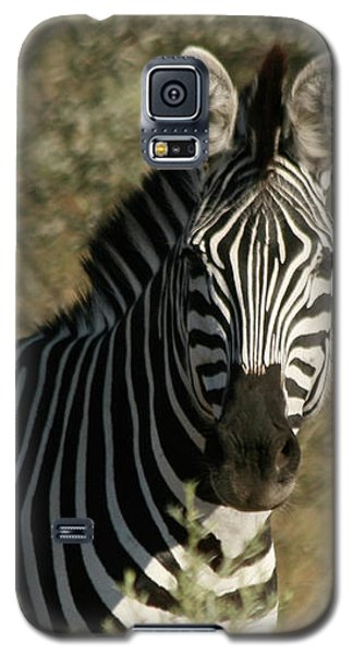 Zebra Portrait Galaxy S5 Case