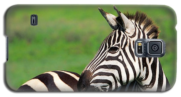 Zebra Galaxy S5 Case