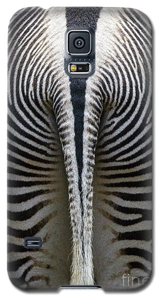 Galaxy S5 Case featuring the photograph Zebra Stripes by Heiko Koehrer-Wagner