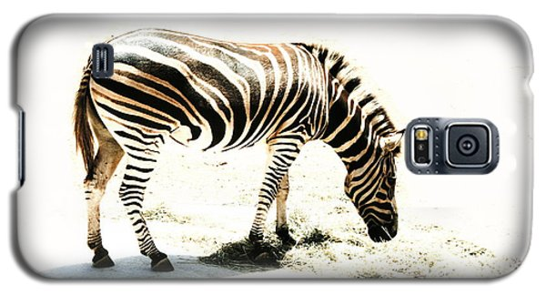 Zebra Stripes Galaxy S5 Case by Stephen Mitchell