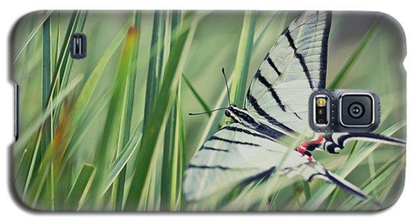 Zebra Swallowtail Galaxy S5 Case