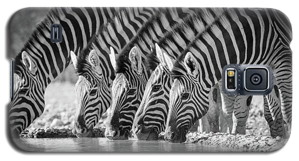 Zebras Drinking Galaxy S5 Case by Inge Johnsson