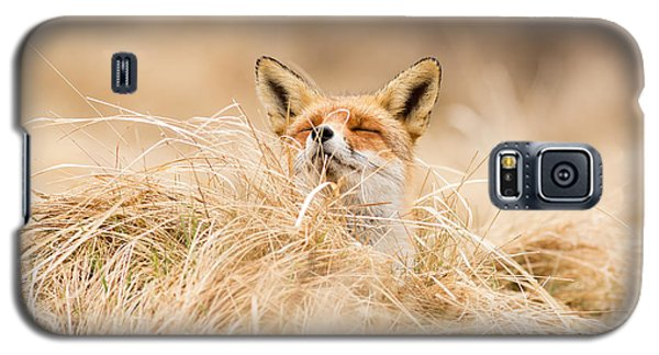 Zen Fox Series - Zen Fox 2.7 Galaxy S5 Case by Roeselien Raimond