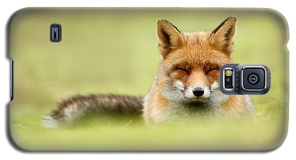 Zen Fox Series - Zen Fox In A Sea Of Green Galaxy S5 Case by Roeselien Raimond