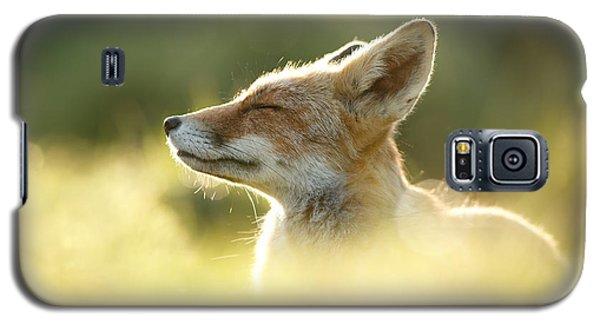 Zen Fox Series - Zen Fox Up Close Galaxy S5 Case