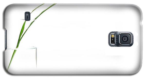 Zen Grass Galaxy S5 Case
