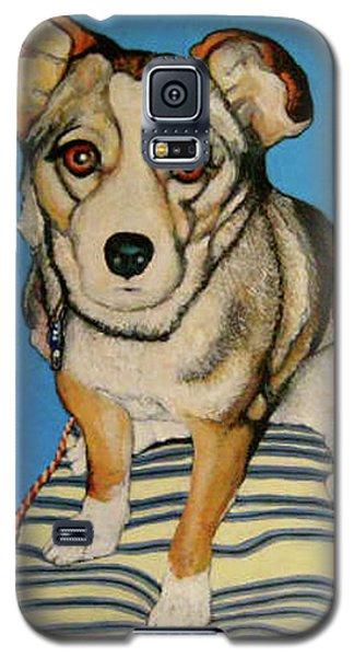 Ziggy Galaxy S5 Case