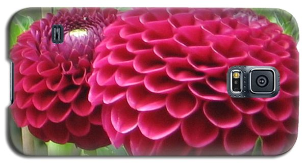 Zinnia Duet Galaxy S5 Case