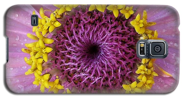 Galaxy S5 Case featuring the photograph Zinnia by Geraldine Alexander