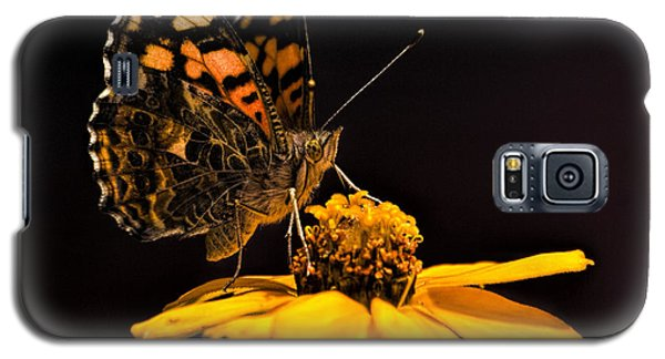 Zinnia Sipping Galaxy S5 Case by Alana Thrower