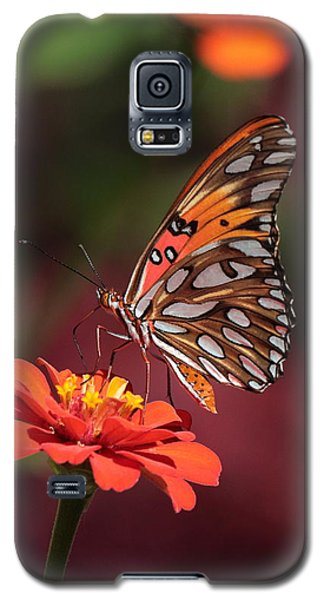Zinnia With Butterfly 2668 Galaxy S5 Case