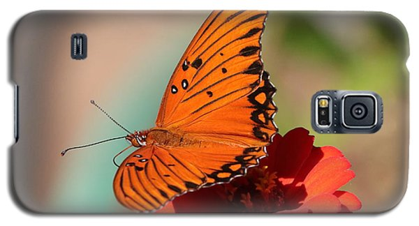 Zinnia With Butterfly 2669 Galaxy S5 Case
