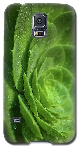 Aenomium_4140 Galaxy S5 Case
