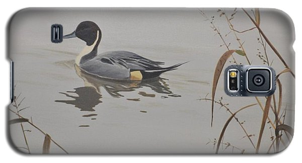 Ankeny Pintail Galaxy S5 Case