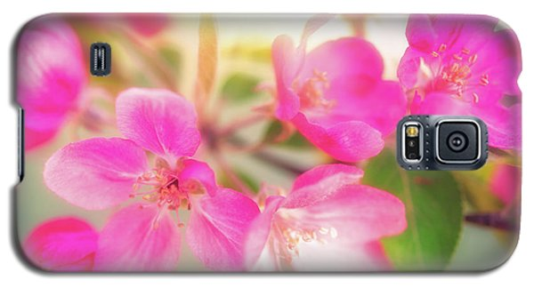Apple Blossom 6 Galaxy S5 Case