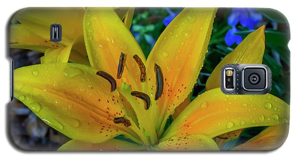 Asiatic Lily Galaxy S5 Case