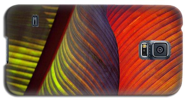 Banana Leaf 8602 Galaxy S5 Case