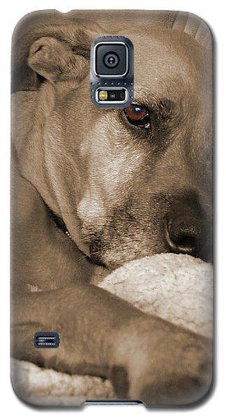 Boxer Varon Portrait 2 Galaxy S5 Case