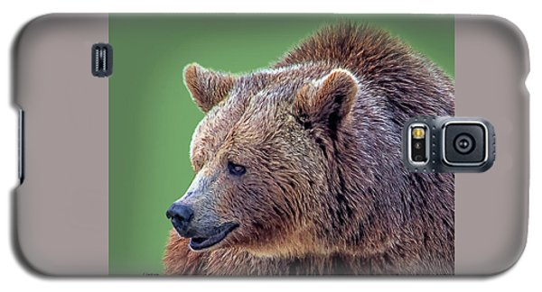 Brown Bear 5 Galaxy S5 Case