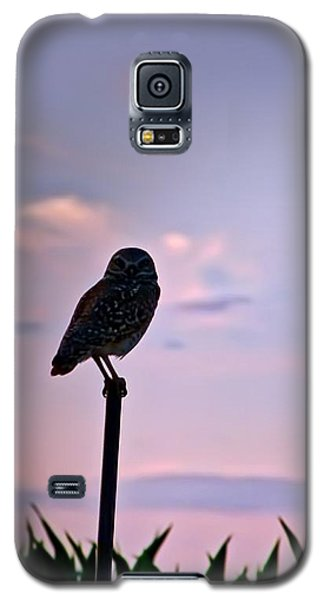 Burrowing Owl On A Stick Galaxy S5 Case