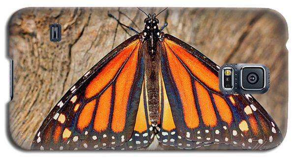 Butterfly Wings Galaxy S5 Case
