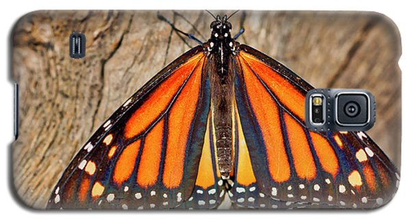 Butterfly Wings Galaxy S5 Case