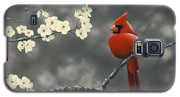 Cardinal And Blossoms Galaxy S5 Case