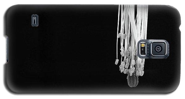 Christmas Cactus Stamen Galaxy S5 Case