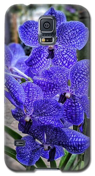 Deep Purple Orchid Galaxy S5 Case
