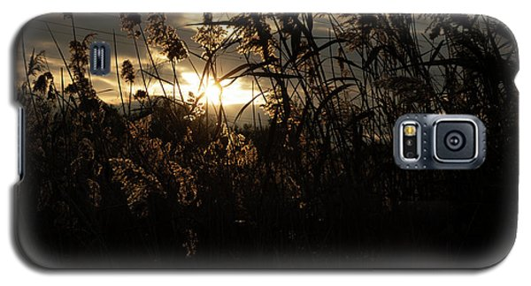 Dusk  Galaxy S5 Case