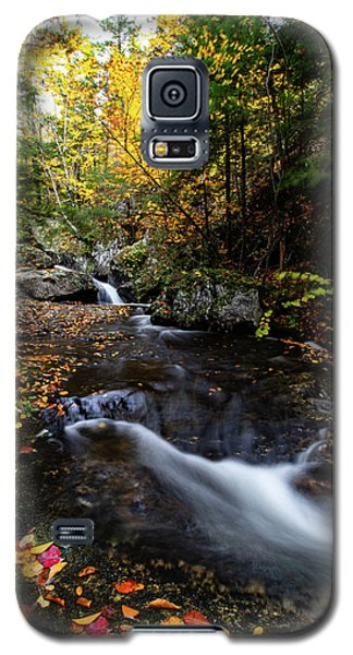 Fall Colors Sandwich New Hampshire Galaxy S5 Case
