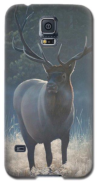 First Light - Bull Elk Galaxy S5 Case