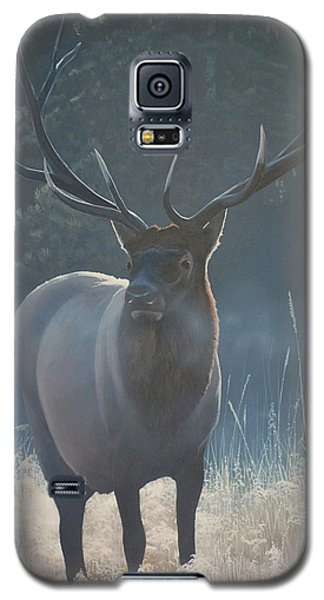First Light - Bull Elk Galaxy S5 Case