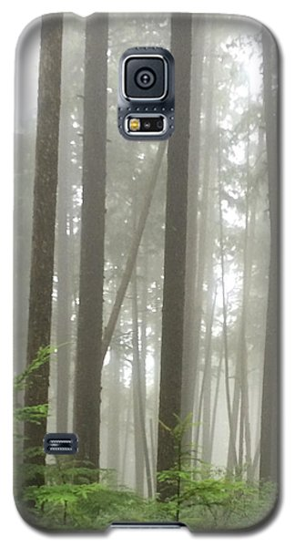 Foggy Forest Galaxy S5 Case