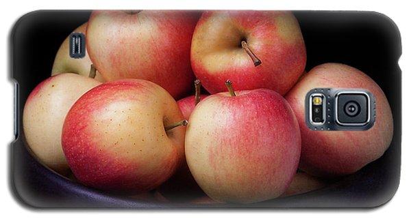 Gala Apples Galaxy S5 Case