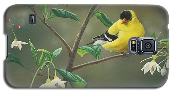 Goldfinch And Snowbells Galaxy S5 Case