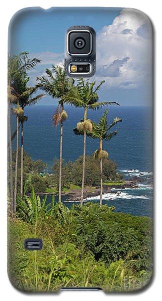 Hawaii Big Island Galaxy S5 Case