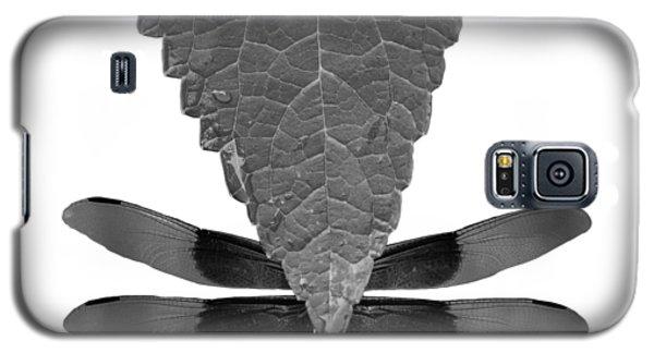 Hiding Dragons Galaxy S5 Case