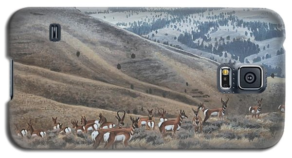 High Country Pronghorn Galaxy S5 Case
