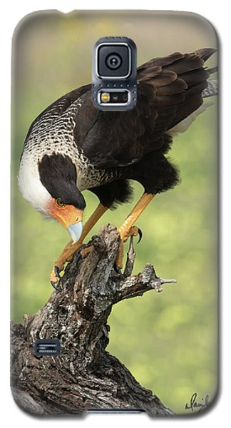 Looking Down Galaxy S5 Case