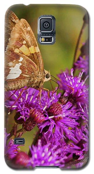 Moth On Purple Flowers Galaxy S5 Case