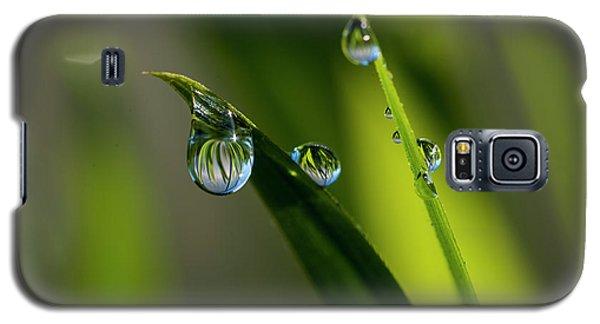 Rain Drops On Grass Galaxy S5 Case