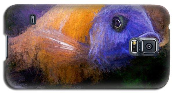 Red Fin Borleyi Cichlid Galaxy S5 Case